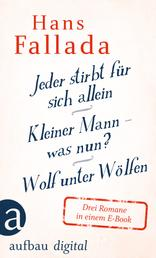 Jeder stirbt für sich allein / Kleiner Mann – was nun? / Wolf unter Wölfen - Drei Romane in einem E-Book