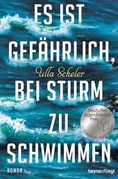 Es ist gefährlich, bei Sturm zu schwimmen - Roman