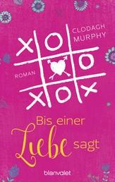 Bis einer Liebe sagt - Roman