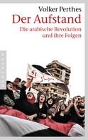 Volker Perthes: Der Aufstand ★★★