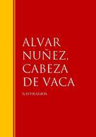 ALVAR NUÑEZ CABEZA DE VACA: NAVFRAGIOS