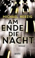 Michael Herzig: Am Ende die Nacht ★★