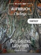 Frederik Elting: Des Geistes Labyrinth ★★