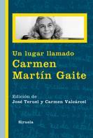 José Teruel: Un lugar llamado Carmen Martín Gaite