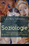 Georg Simmel: Soziologie - Untersuchungen über die Formen der Vergesellschaftung ★★★