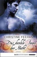 Christine Feehan: Das dunkle Feuer der Nacht ★★★★★