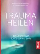 Cornelia Dehner-Rau: Trauma heilen