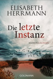 Die letzte Instanz - Joachim Vernau 3 - Kriminalroman