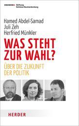 Was steht zur Wahl? - Über die Zukunft der Politik