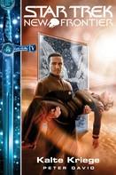 Peter David: Star Trek - New Frontier 10: Portale - Kalte Kriege ★★★★★