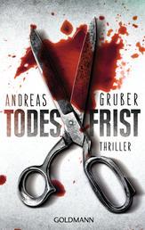 Todesfrist - Maarten S. Sneijder und Sabine Nemez 1 - Thriller