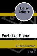Sabine Deitmer: Perfekte Pläne ★★★★