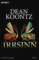 Irrsinn - Roman