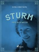 Stig Ericson: Sturm über Bluewater ★★★★
