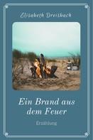Elisabeth Dreisbach: Ein Brand aus dem Feuer