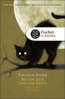 Theodor Storm: Mondschein über dem Deich