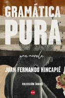 Juan Fernando Hincapié: Gramática pura