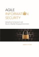 James R. Fitzer: Agile Information Security