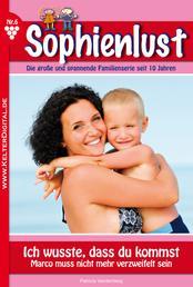 Sophienlust 6 - Familienroman - Ich wusste, dass du kommst