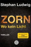 Stephan Ludwig: Zorn - Wo kein Licht ★★★★