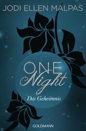 One Night - Das Geheimnis - Die One Night-Saga 2