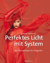 Perfektes Licht mit System - Ein Praxisleitfaden für Fotografen