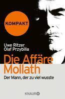 Uwe Ritzer: Die Affäre Mollath - kompakt