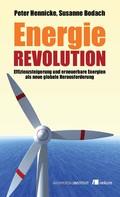 Peter Hennicke: Energierevolution