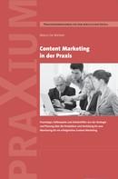 Marco De Micheli: Content Marketing in der Praxis