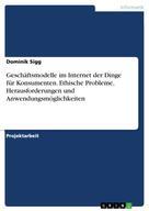 Dominik Sigg: Geschäftsmodelle im Internet der Dinge für Konsumenten. Ethische Probleme, Herausforderungen und Anwendungsmöglichkeiten