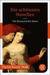 Die schönsten Novellen - Von Boccaccio bis Storm