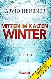 Mitten im kalten Winter - Thriller