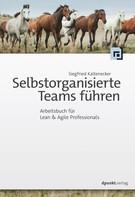 Siegfried Kaltenecker: Selbstorganisierte Teams führen