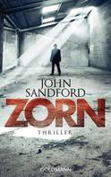 John Sandford: Zorn ★★★★