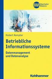 Betriebliche Informationssysteme - Datenmanagement und Datenanalyse