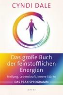 Cyndi Dale: Das große Buch der feinstofflichen Energien