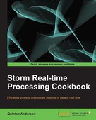 Quinton Anderson: Storm Real-time Processing Cookbook