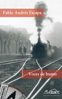 Pablo Andrés Escapa: Voces de humo