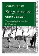 Werner Niegisch: Kriegserlebnisse eines Jungen ★★★★★
