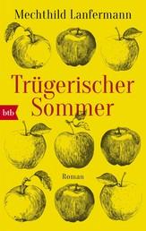 Trügerischer Sommer - Roman