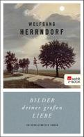 Wolfgang Herrndorf: Bilder deiner großen Liebe ★★★★