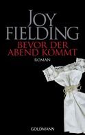 Joy Fielding: Bevor der Abend kommt ★★★★