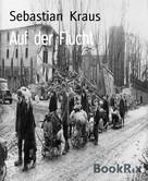 Sebastian Kraus: Auf der Flucht ★★★